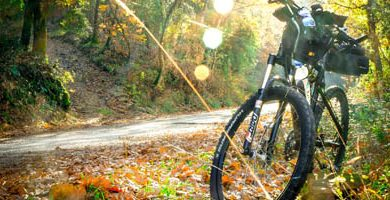 TOP 5 bicis de mtb